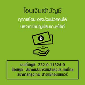 Donate300