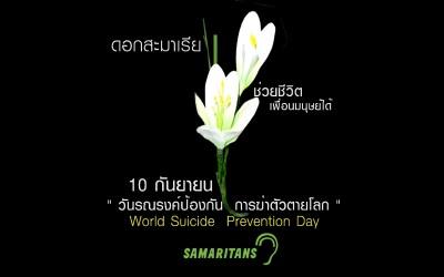 10 กันยา เชิญชวนร่วมซื้อดอกสะมาเรีย ช่วยชีวิตเพื่อนมนุษย์